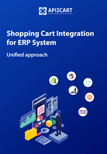 ERP API Integration