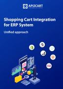 ERP API Integration