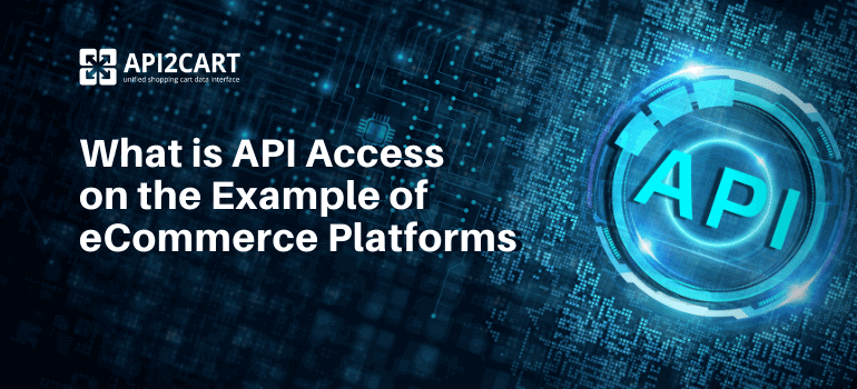 What is API Access
